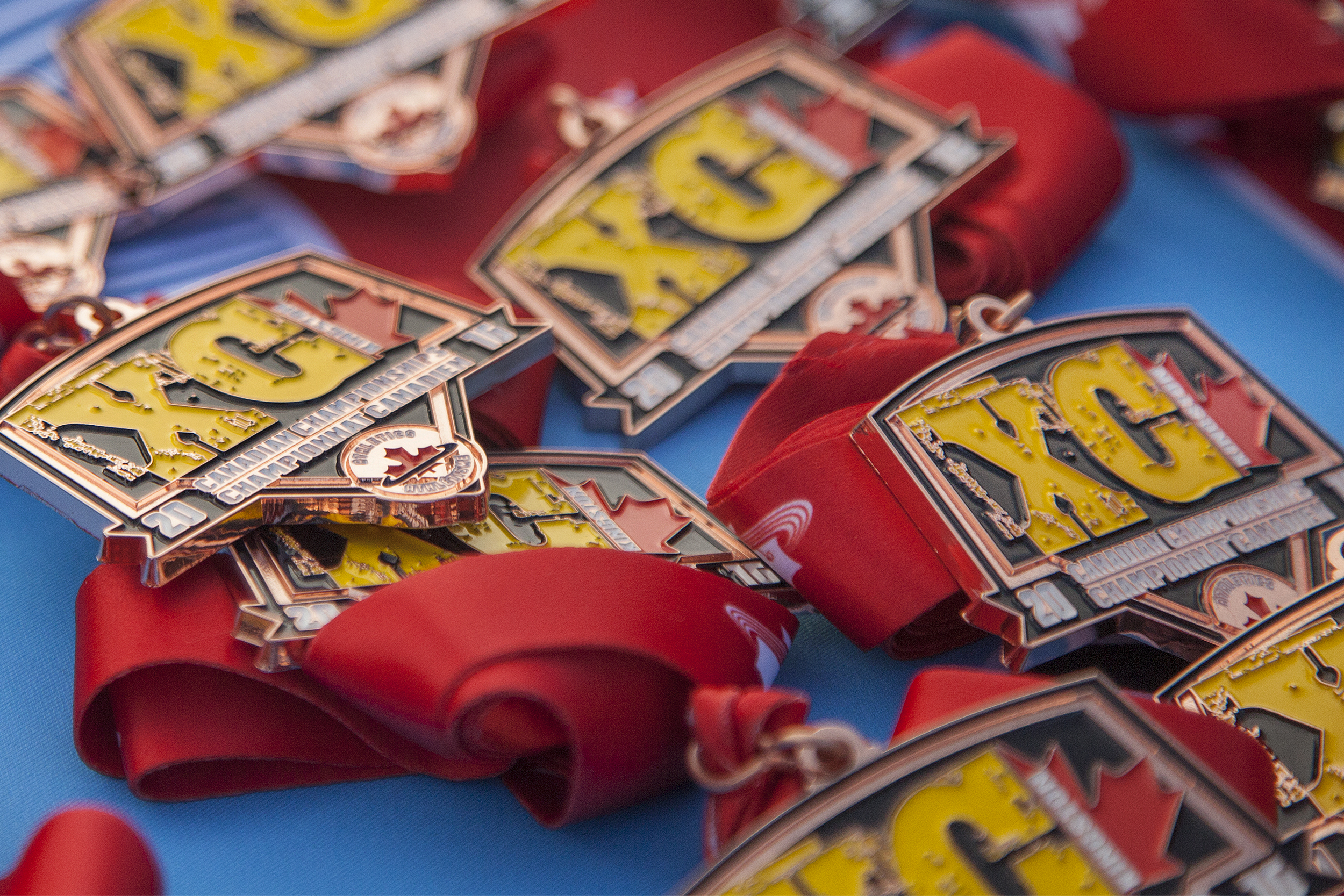 Canadian XC Championships Awards for 2016.